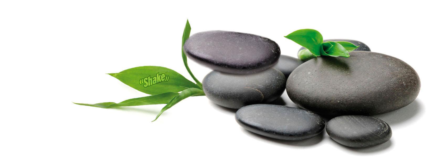 Zen Shake osvezilec za avto